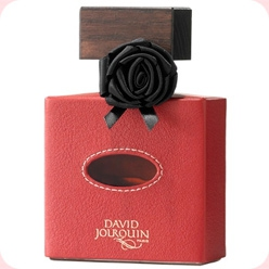 Cuir de R`Eve  David Jourquin