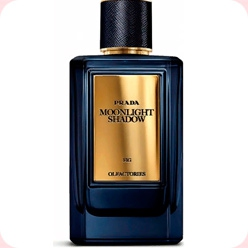 Prada Moonlight Shadow  Prada