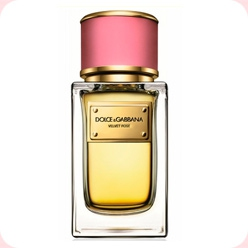 Dolce&Gabbana Velvet Rose  Dolce And Gabbana