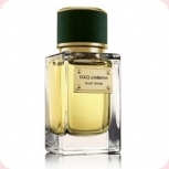 Dolce And Gabbana D&G Velvet Vetiver
